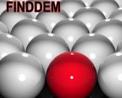 Posicionamiento Web SEO Internacional FINDDEM